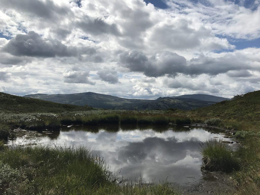 En liten innsjø langs stien